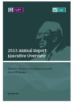 2013 Whitaker Institute Annual Report