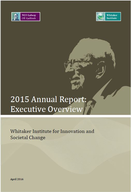 2015 Whitaker Institute Annual Report